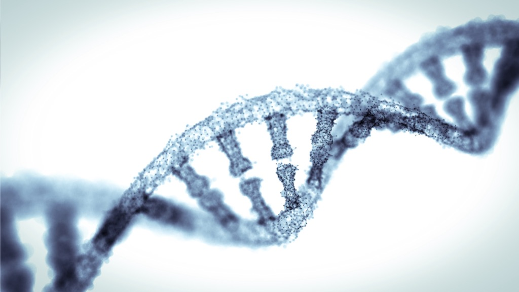 3D technology: a key part of mapping the human genome