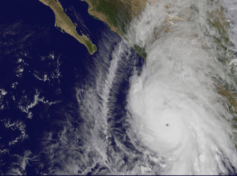 patricia-goes-102315